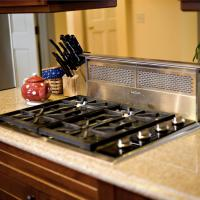 Wolf cooktop and downdraft on Cambria countertop
